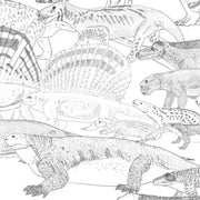 The Stem-Mammals--a Brief Primer