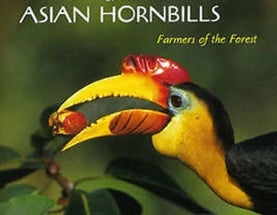 The Splendid and Remarkable Anatomy of Hornbills