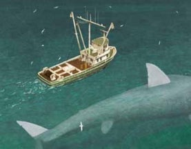 Tales from the Cryptozoologicon: Megalodon!