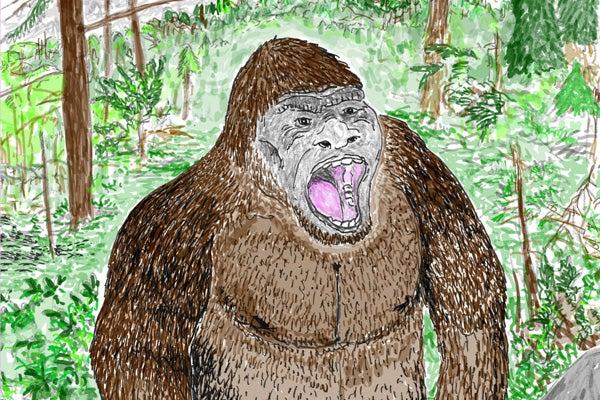 If Bigfoot Were Real - Scientific American Blog Network