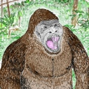 If Bigfoot Were Real