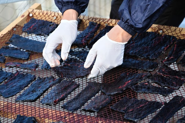 Japanese Whaling Is Not the Greatest Threat to Whale Conservation