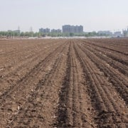 Soil Pollution in China Still a State Secret Despite Recent Survey