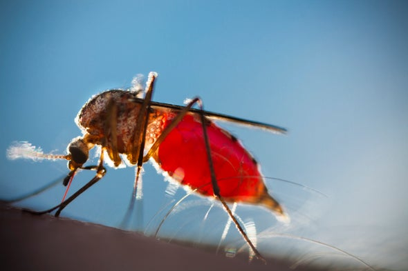 Predicting Mosquito Populations to Keep Diseases in Check