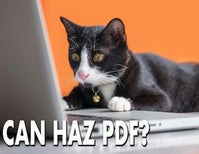 Yes, You Can Haz PDF