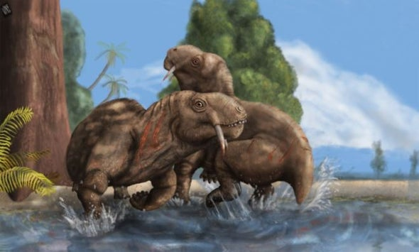 The Earliest Saberteeth Were For Fighting, Not Biting