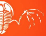 Classic Flying Trilobite on Medium