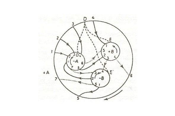 A Few of My Favorite Spaces: The Poincaré Homology Sphere