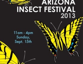 September 15th: A great day out at Arizona insect festival