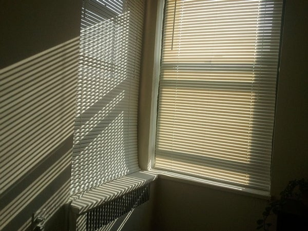 Window Material Can Let in Sunshine While Blocking Heat