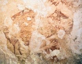 Ancient Indonesian Cave Paintings Force Rethink of Art's Origin