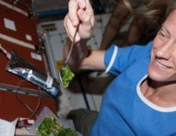 Astronaut nutrition: staying healthy for a year in space