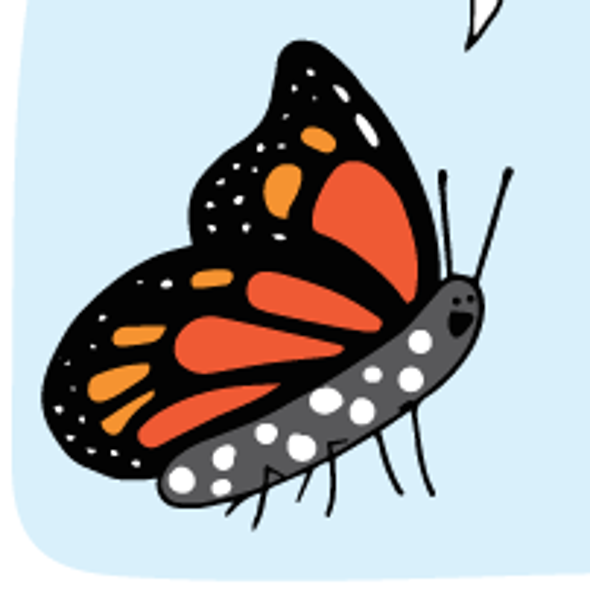 It's Pollinators Week!