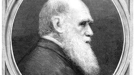 Why Can't More Scientists Write Like Darwin?