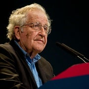 Is Chomsky's Theory of Language Wrong? Pinker Weighs in on Debate