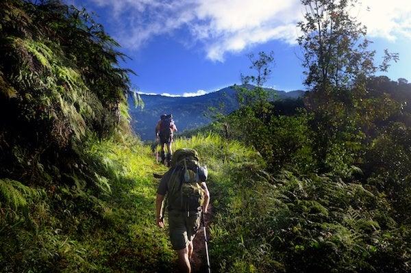 scientificamerican.com - Tim Moss - The (Scientific) Path Less Traveled