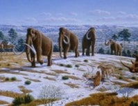 Ancient resistance – ice-age bacteria that could fight off antibiotics