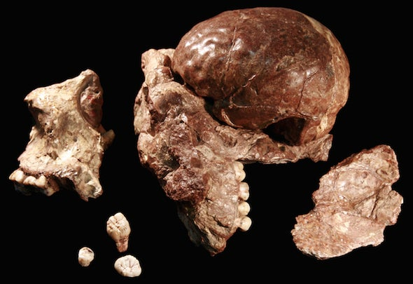 The Fossil That Rewrote Human Prehistory