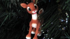 Why Rudolph Should Have Never Joined Santa's Reindeer