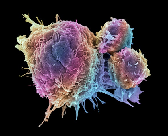Cancer Therapy in 2020