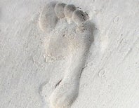 Is a Footprint the Right Metaphor for Ecological Impact?