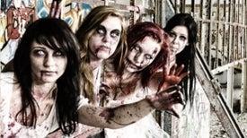 Avoiding Zombie Attacks with Social Psychology