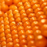 Why You Should Care about High-Dimensional Sphere Packing