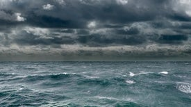 The Last of the Ocean Wilderness