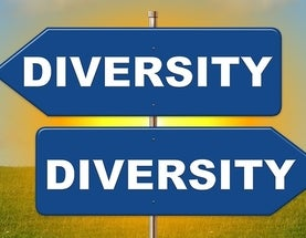 the misconceptions of the views on diversity as a racial issue Gender and racial discrimination report of the expert group  the commission on the status of women decided to consider the issue of gender and all forms of.