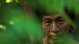 Indigenous Knowledge Can Help Solve the Biodiversity Crisis