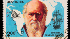 "On ""Darwinism"""
