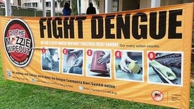 Biting Back: Developing a Dengue Vaccine