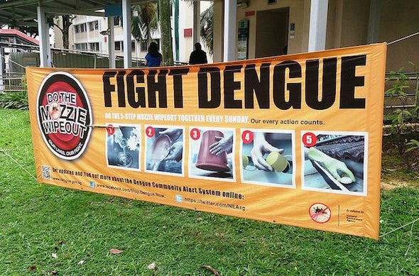 Biting Back: Developing a Dengue Vaccine