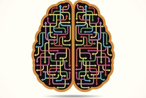 ¿Puede el cerebro desechar malos recuerdos?