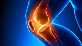 ¿Se pueden usar células nasales para reparar la articulación de la rodilla?