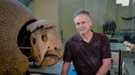 Detective del colágeno reconstruye el pasado de los ungulados suramericanos