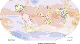 Amenaza para los puntos calientes de biodiversidad