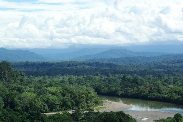 Ecuador comienza a extraer petróleo de un rincón virgen de la Amazonia