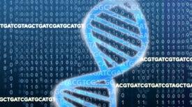 ¿Pueden los genes influenciar nuestro comportamiento?