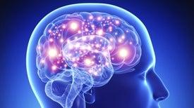 Prueban en humanos dispositivos para potenciar la memoria