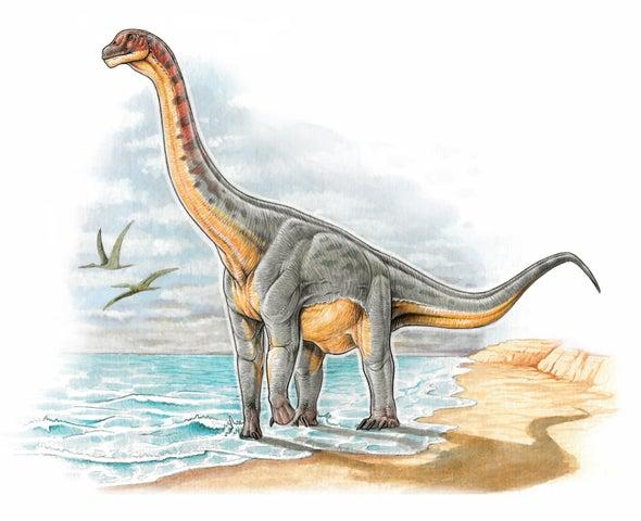 Científicos descubren el primer dinosaurio en suelo colombiano