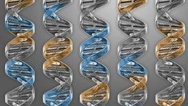 Sintetizan la 'célula mínima' con solo 473 genes necesarios para la vida