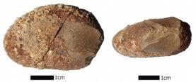 Hallazgo arqueológico en Chile revela presencia humana en América hace 18.000 años