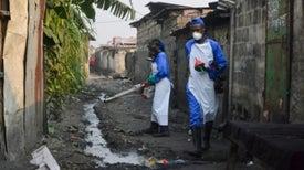 ¿Podría la fiebre amarilla convertirse en la próxima pandemia?