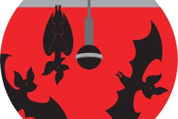 Cantos seductores de los murciélagos