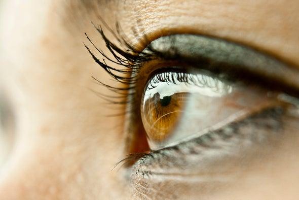 ¿Cómo evolucionó la visión periférica del hombre?