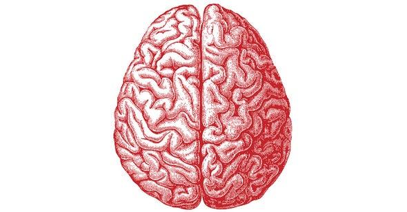 ¿Existen huellas de la memoria en el interior de la célula?