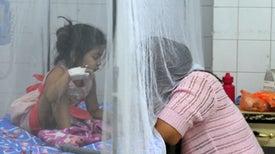 El dengue pasa una factura anual de $8.900 millones