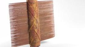 Los peines para piojos más antiguos de América [Galería de fotos]