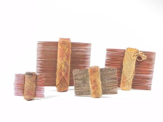 Hallan los peines para piojos más antiguos de América